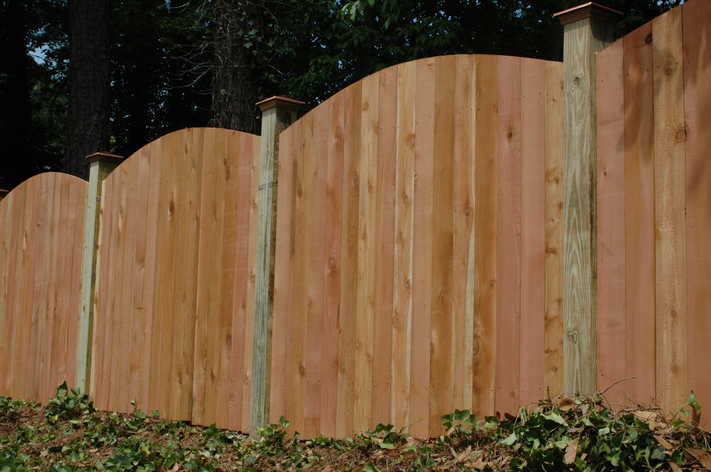 Standard cedar fence designs allied fence scalloped cedar privacy fence workwithnaturefo
