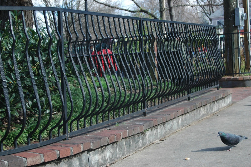 Decorative Wrought Iron Fencing | Iron Gate  Fence Builder