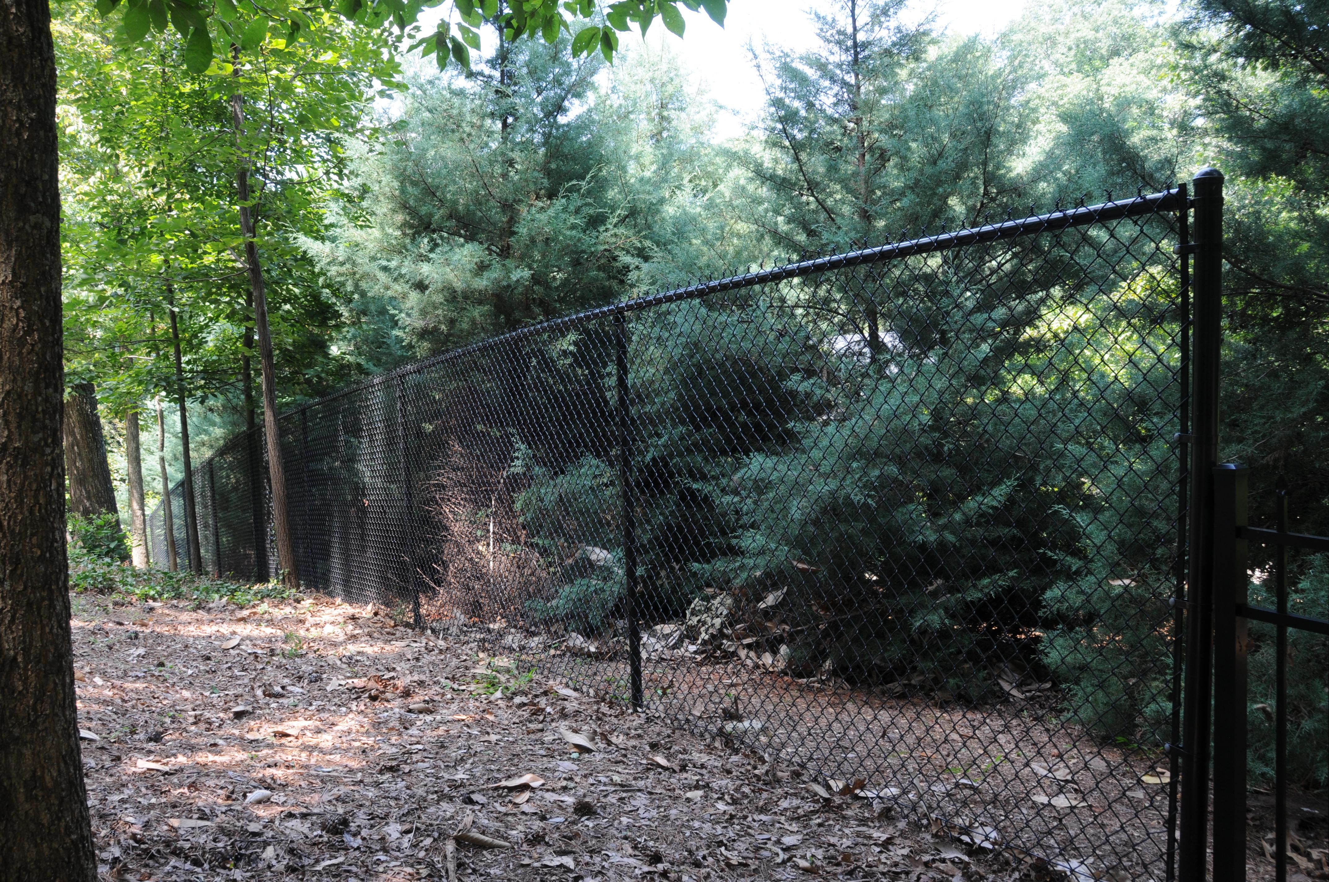 Black Vinyl Chain Link Fencing