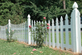 French Gothic Reverse Scallop Picket Fence