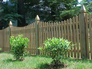 Pointed Scalloped Picket Fence